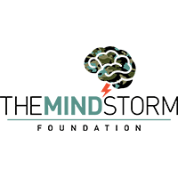 The Mindstorm Foundation